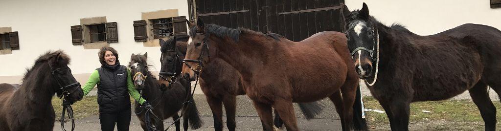 Stefanie Strudel mit Ihren Ponys und Pferden