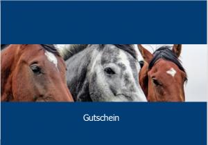 Gutschein der Weiterbildung Pferd zum Verschenken von Bildung