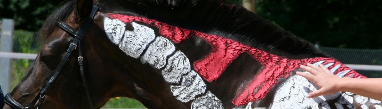 Aufgemaltes Skelett am Pferd